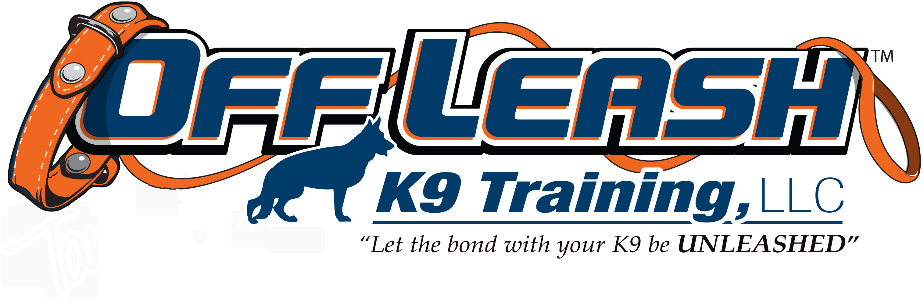Alexandria Offleash K9 Dog Training